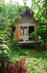 Panya house